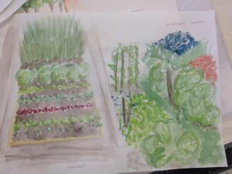 Concept drawings of allotments